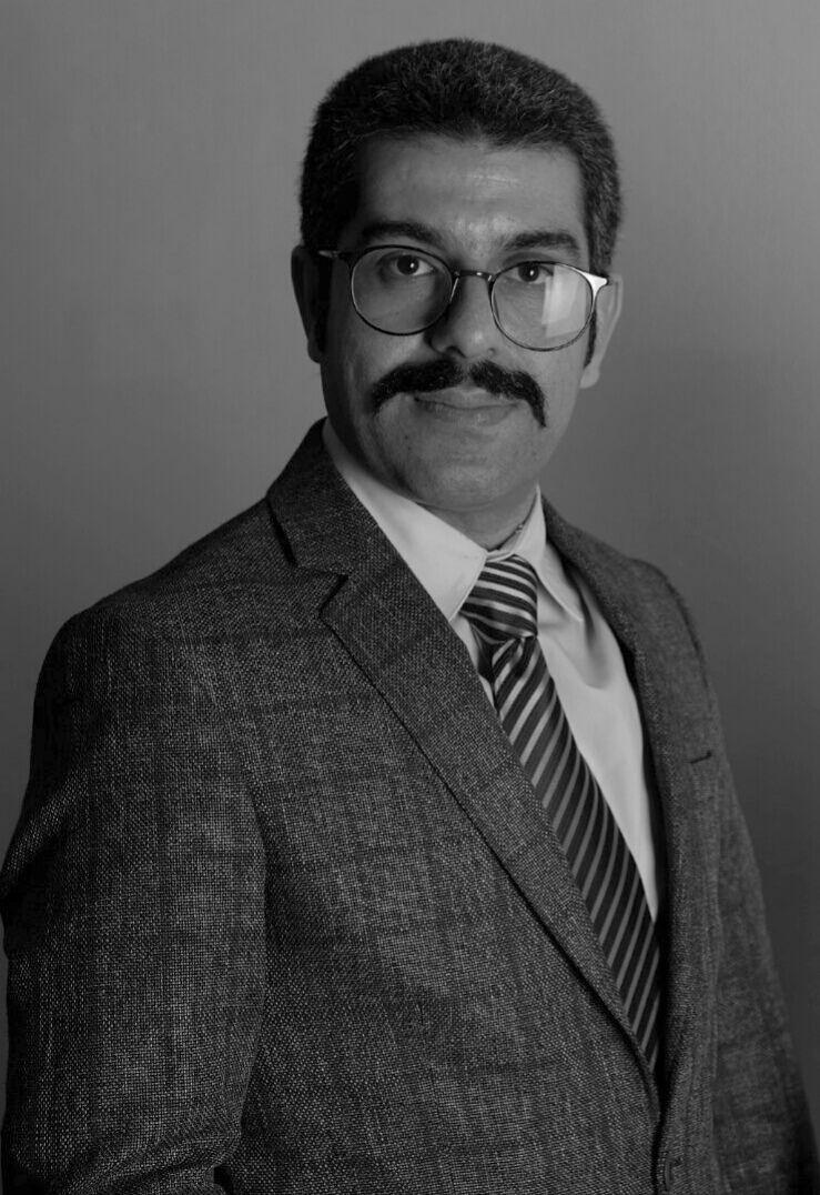 حامد احمدی